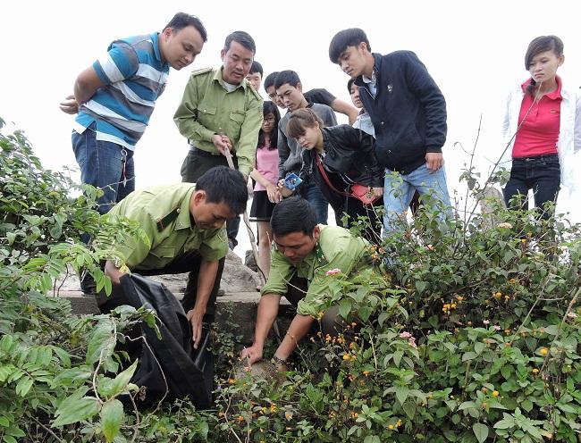 Kiểm lâm viên liên quân Sơn Trà - Ngũ Hành Sơn đang làm nhiệm vụ trên bán đảo Sơn Trà (Ảnh: SNNPTNTĐN).