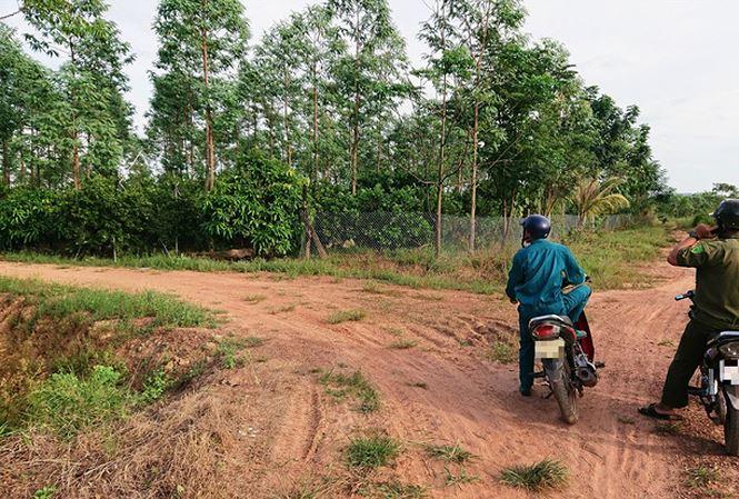 Người dân tại xã Ea Bung dựng nhà, trồng cây trên đất lâm nghiệp