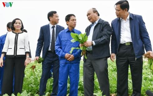 Thủ tướng động viên, thăm hỏi nông dân, người lao động tại nông trường.