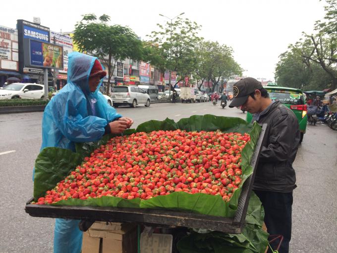 Người bán dâu tây mặc áo mưa để chống chọi với cái lạnh giữa đường (Ảnh: Thân Hiền)