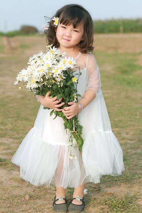 Không những tượng trương cho sức sống trong sáng, thuần khiết; cúc họa mi còn được ví như loài hoa của lòng hiếu thảo, của tình cảm gia đình đầm ấm thiết tha...