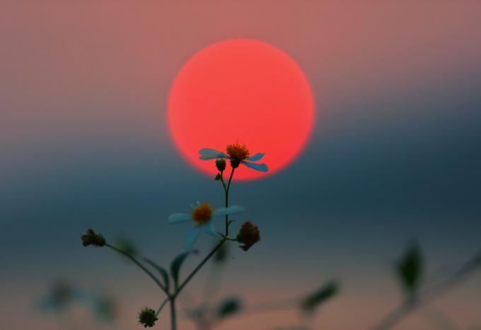 Mặt trời đỏ rực như hòn lửa, đẹp mê hồn như nhà thơ Huy Cận đã ví trong bài