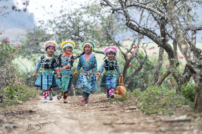 Đến Việt Nam dịp Tết du khách không thể bỏ qua cao nguyên Mộc Châu, tỉnh Sơn La bởi cảnh sắc thiên nhiên tươi đẹp và văn hóa phong phú.
