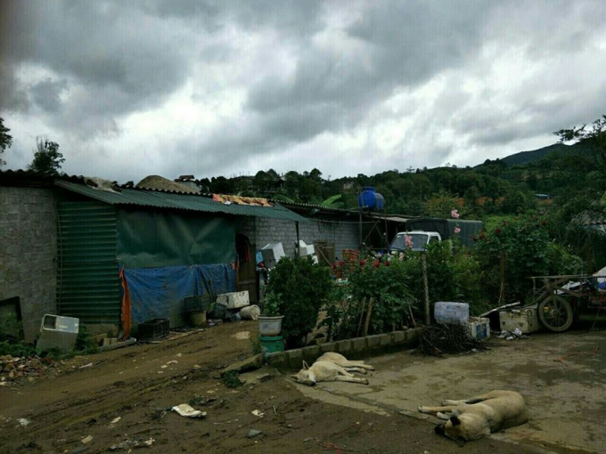 Khu đất và nhà cấp 4 của ông Đoàn Văn Mạc trước khi bị cưỡng chế.