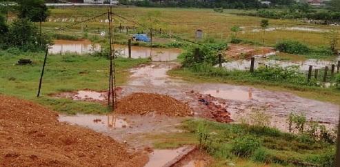 Đất và nước thải có trộn hóa chất được Công ty TNHH sản phẩm Sắc Màu ngang nhiên xả trực tiếp ra môi trường.