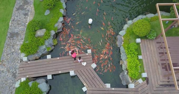 Biệt thự The Villas tọa lạc tại khu vực ven sông Sài Gòn, có lối kiến trúc theo phong cách tân cổ điển, mang lại vẻ sang trọng, tận dụng không gian xanh tự nhiên, tạo nên môi trường sống thoáng đãng và riêng tư.