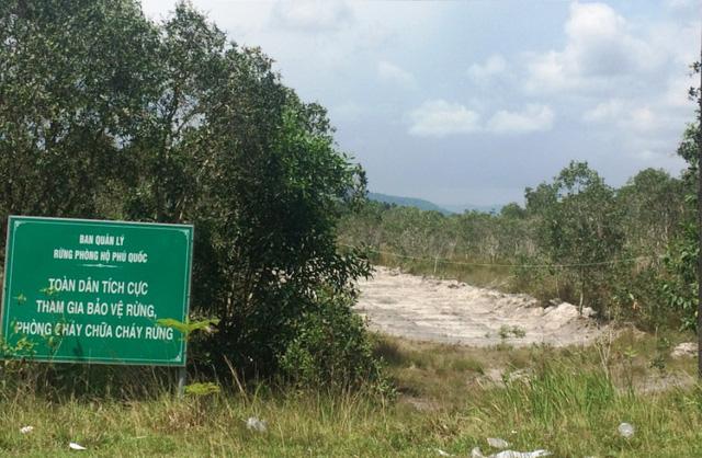 Không chỉ có hiện tượng phân lô, bán nền đất nông nghiệp mà còn có cả tình trạng lấn chiếm đất rừng.