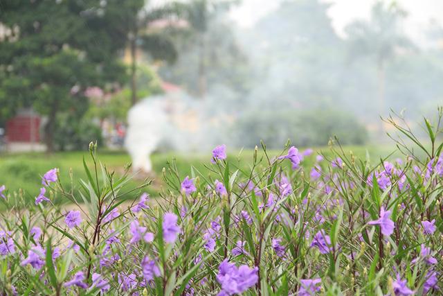 Bên bờ sông đối diện vẫn đầy cỏ dại và rác thải do không được trồng hoa.