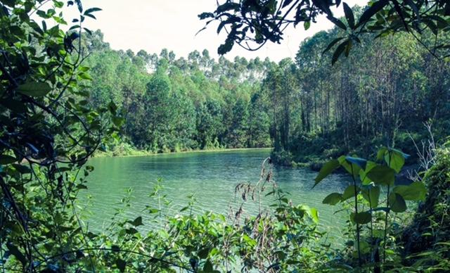 Cây cối, hồ nước còn nguyên vẻ hoang sơ.
