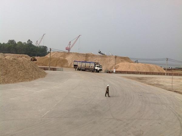 Hàng nghìn m2 đất thuộc phường Bãi Cháy đã được Công ty Hoài Nam đầu tư hàng chục tỷ đồng tôn tạo, bỗng dưng UBND tỉnh Quảng Ninh thu hồi và không bồi thường, hỗ trợ.