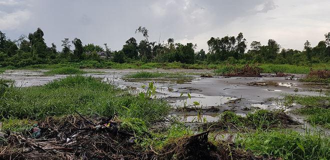 Khu công nghiệp Đông Nam, phần lớn đất vẫn còn bỏ trống, cỏ mọc um tùm.