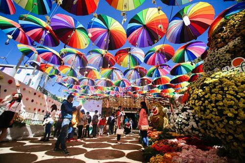 Hình ảnh tại Festival hoa Đà Lạt