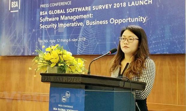 Đại diện BSA khu vực châu Á-Thái Bình Dương cho biết việc giảm 4% thể hiện nỗ lực không nhỏ của Việt Nam trong thời gian qua trong việc thực thi quyền sở hữu trí tuệ. (Ảnh: T.H/Vietnam+)