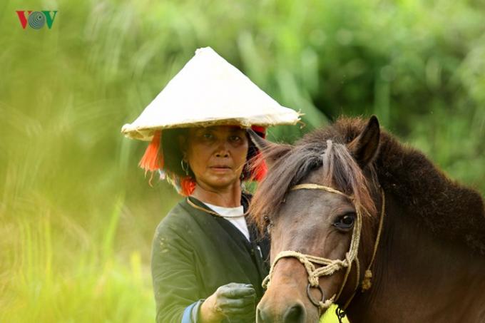 ...ngựa thồ là phương tiện hỗ trợ đặc trưng của bà con vùng cao.