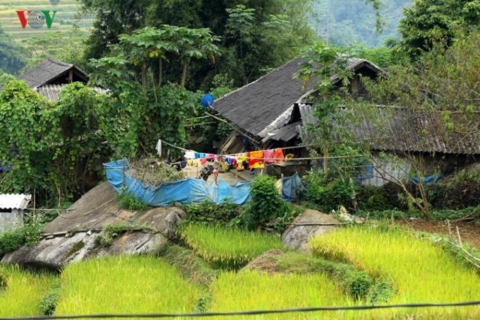 Dưới các thung núi Hoàng Liên Sơn thuộc địa bàn các huyện Than Uyên, Tam Đường, Tân Uyên, tỉnh Lai Châu là nơi quần cư của các bản làng đồng bào người Mông, Dao, Giáy...