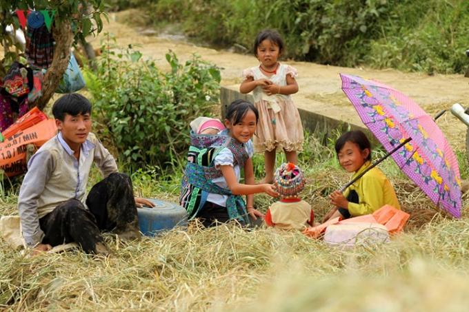 Trong khi người lớn tham gia thu hoạch thì các cháu nhỏ giúp bố mẹ trông giữ em.