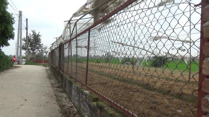 Mảnh đất tại thôn Đông Hương đã bị giao trái thẩm quyền cho ông Vũ Xuân Tuấn, trú tại thôn Giàng - Thị trấn Thứa.