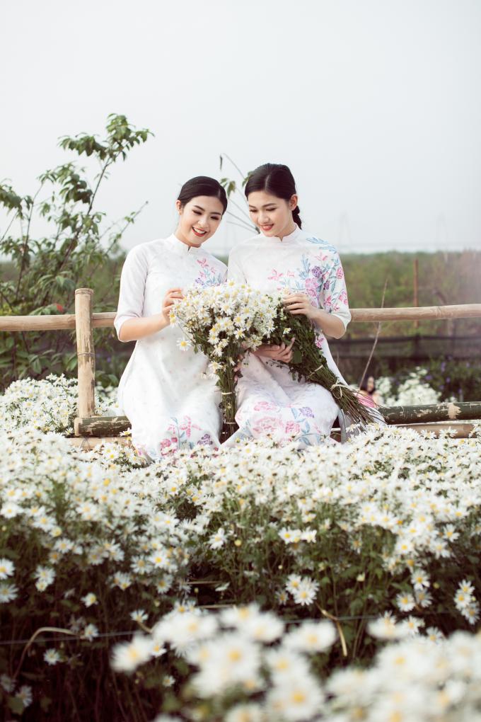 Bộ sưu tập áo dài 'Hương đồng nội' do Ngọc Hân thiết kế lấy cảm hứng từ hình ảnh những bông hoa cúc họa mi dịu dàng, thanh khiết.