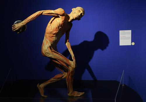 Một mô hình người tại triển lãm tại TP HCM.