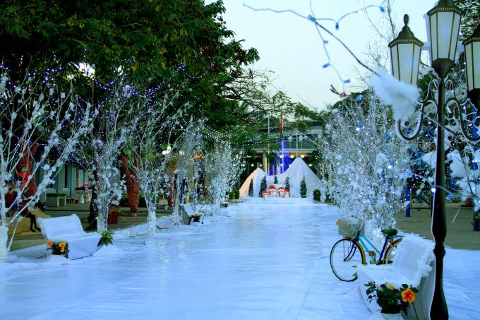 Lạc vào khu vườn cổ tích trắng xóa tại lễ hội