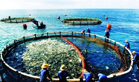 Image result for ý nghĩa việc sử dụng hợp lí tài nguyên biển