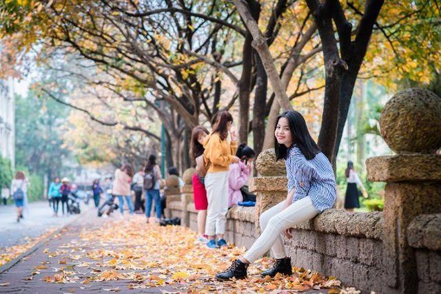 Nhiều người ví von con đường này chính là con đường thủy sam thu nhỏ bởi vẻ đẹp lãng mạn mà nó mang lại mỗi độ cây lộc vừng vào mùa thay lá (ảnh: Nguyễn Văn Qua)