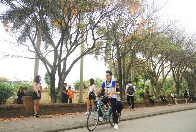 Cũng có thể là một chuyện tình gà bông trong sáng, hồn nhiên cùng nhau đi trên chiếc xe đạp, hai bên đường rợp sắc vàng.