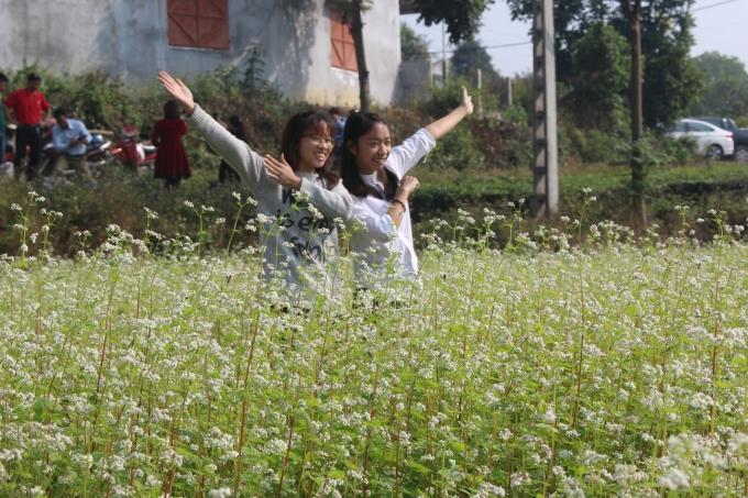 Giới trẻ hào hứng check in tại vườn hoa.