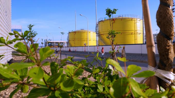 Hai bên các con đường nội bộ bên trong nhà máy, được trồng nhiều hàng cây xanh nay đã kết tán.