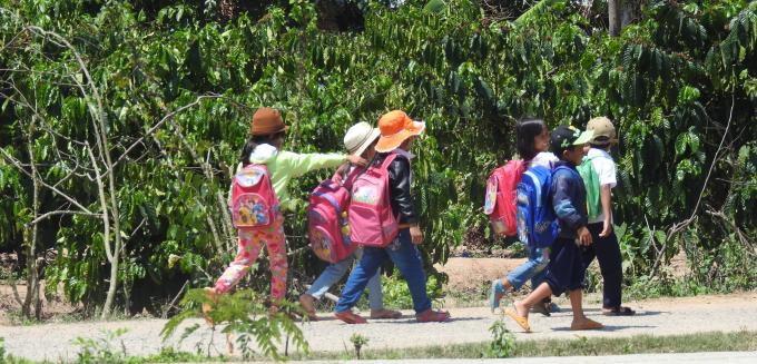 Học sinh bỏ học đi làm sớm ở huyện Krông Bông đã dần dần quay lại lớp học