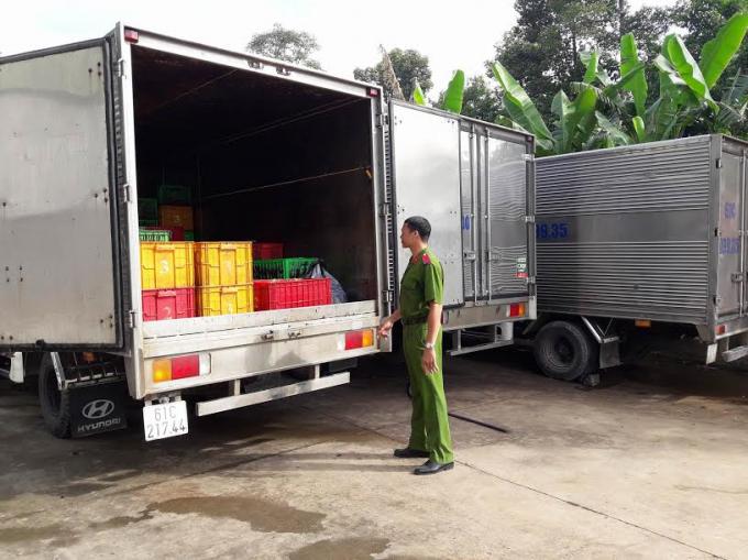 Bắt 3 xe chở nội tạng thối đổ xuống sông Đồng Nai.