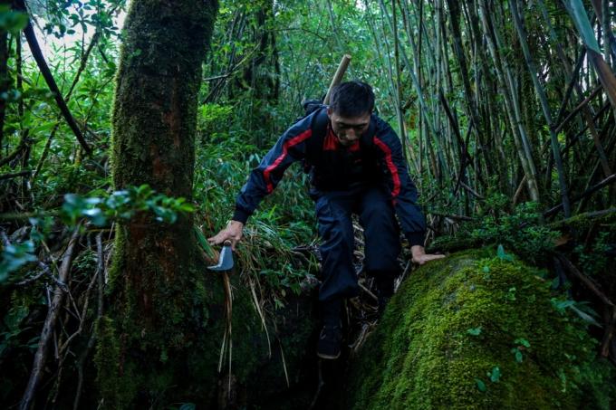Má A Tông, người dân tộc Mông Sa Pả, cao tới gần một mét tám, lênh khênh cõng trên lưng chiếc balo bộ đội cũ sờn, tay cầm quắm phát cây rảo bước dẫn cả đoàn người tiến tới.