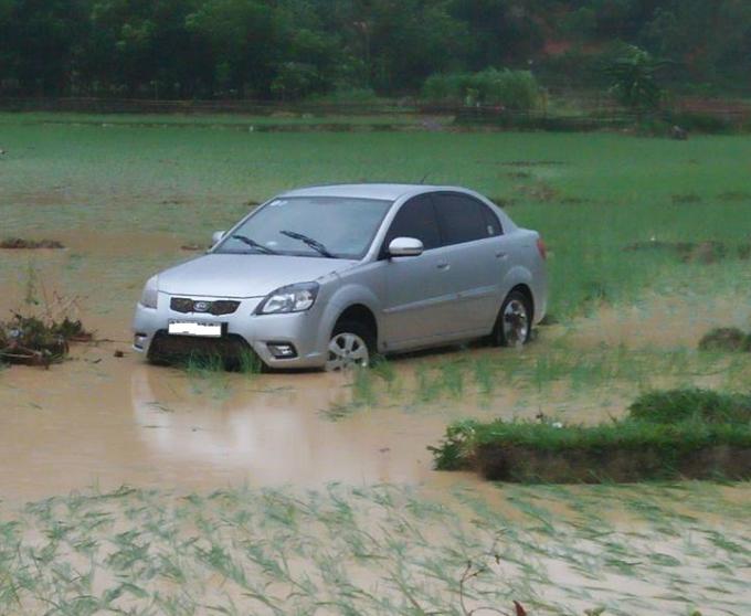 Chiếc ô tô lao xuống ruộng tại địa phận xã Xuân Lộc. (Ảnh: CTV)