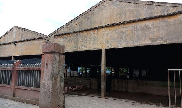 Lò mổ gia súc tại phường Phú Cát tồn tại đã hơn 20 năm nay, gây ảnh hưởng lớn đến cuộc sống của nhiều hộ dân trên địa bàn.