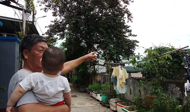 Ông Phạm Văn Hữu (66 tuổi, đường Nguyễn Gia Thiều, phường Phú Hậu) bức xúc vì mùi hôi thối bốc ra từ lò mổ.