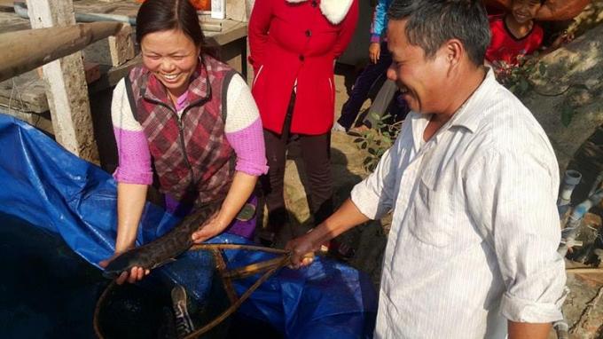 Ông Nhượng chọn bắt cá cho khách đặt ở Hà Nội.