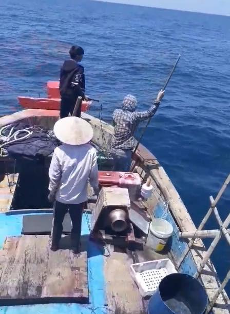 Nhóm ngư dân bị chỉ trích dữ dội vì săn bắt cá heo rồi đăng lên Facebook khoe