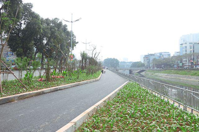 Đến nay, hàng cây xanh được trồng mới thay thế cho hàng cây đị đánh chuyển trước khi thi công. Dải phân cách chính giữa đã được trồng hoa.