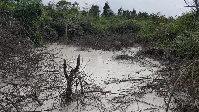 Một lớp bùn cao lanh đang đọng lại tại suối sau mấy ngày mưa. Ảnh: Phan Ba