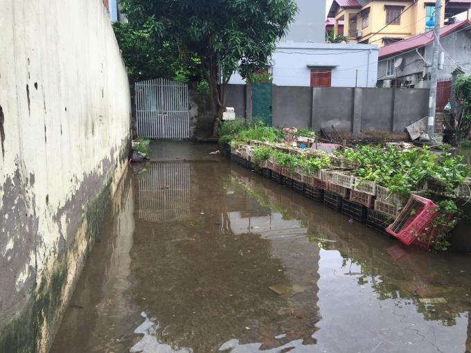 Hà Nội: Sau cơn bão số 2, hàng trăm hộ dân vẫn sống trong ngập úng