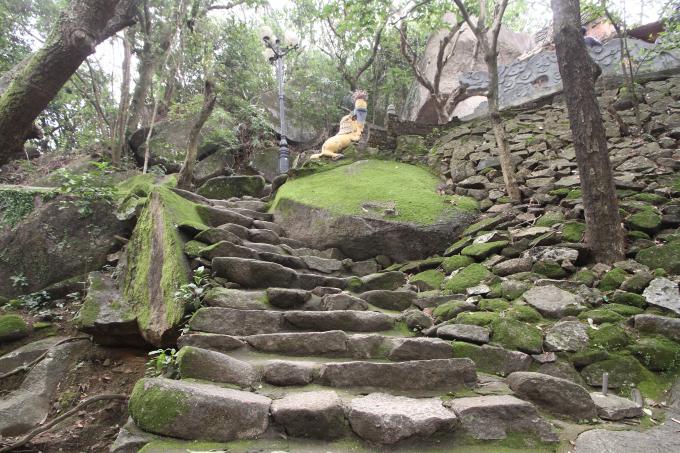 Những phiến đá được phủ một màu rêu xanh, tạo nên cảnh hoang sơ nhẹ nhàng.