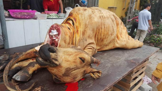 Khi xưa, người dân Nam Định nói chung và du khách thập phương nói riêng hay đi lễ Phủ Dầy thường dâng thịt bò để tạ lễ.
