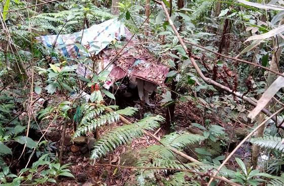 Lâm Đồng: Phát hiện thi thể nam thanh niên trong rừng