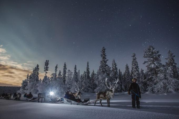 Khi đến Lapland du khách có thể tham gia các tour thăm quan, di chuyển bằng tuần lộc. (Ảnh: Bored Panda)