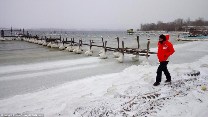 Các cây cầu bị đóng băng do nhiệt độ xuống thấp ở thủ đô Sofia của Bulgaria. (Ảnh: IPG)