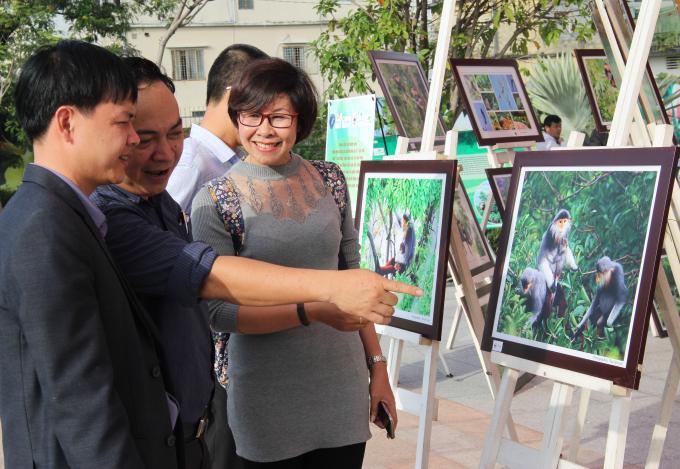 Triển lãm đã thu hút nhiều du khách và người dân Đà Nẵng tham quan.