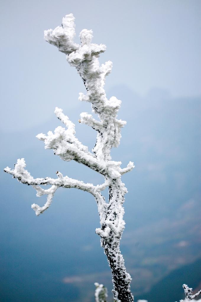 Trung tâm Khí tượng thủy văn tỉnh Cao Bằng cho biết, đợt không khí lạnh lần này tương đối khốc liệt và là đợt rét lạnh nhất mùa đông năm nay, dự đoán, nền nhiệt độ lần này xuống thấp nhất khoảng từ -6 độ đến -8 độ C.