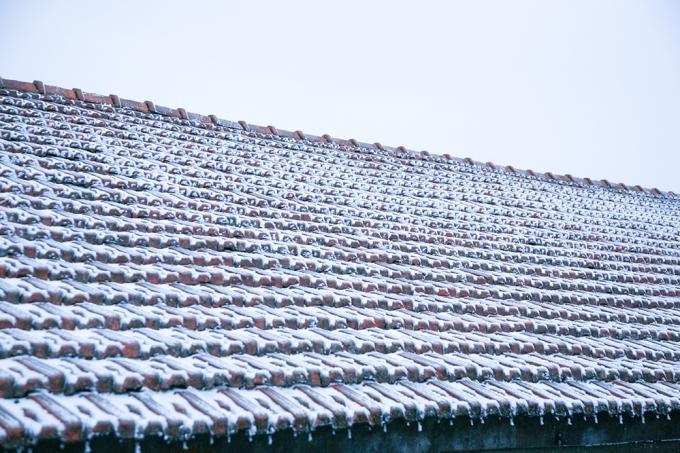 Băng tuyết phủ kín mái nhà.