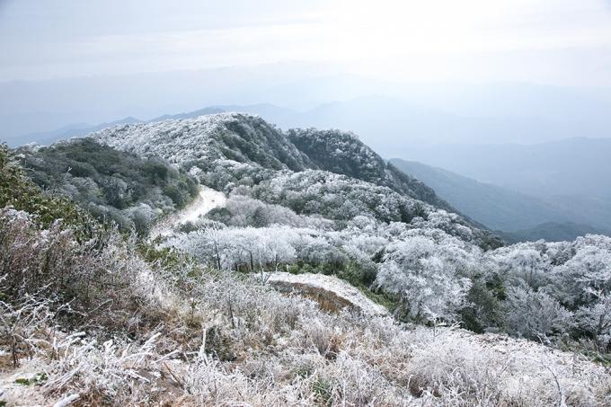 Cả đỉnh núi tràn ngập trong tuyết trắng.