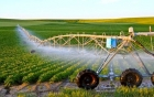 """DN khởi nghiệp bằng nông nghiệp công nghệ cao: Làm thế nào để gỡ """"nút thắt""""?"""